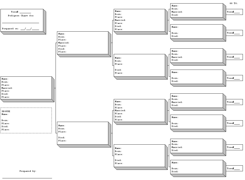 blank family tree new calendar template site